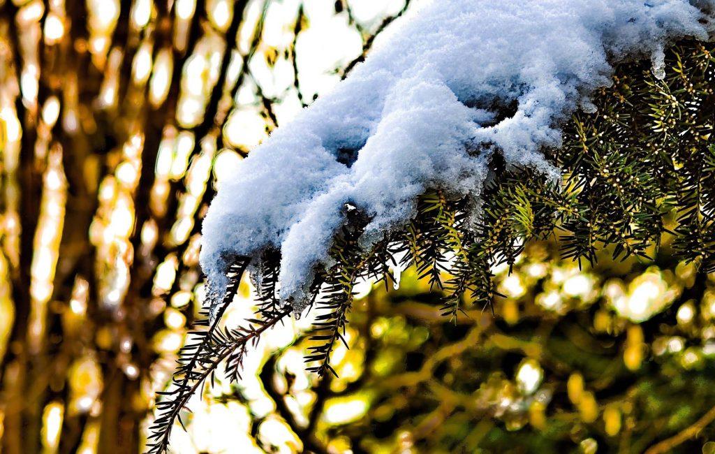 incenso e solstizio d'inverno